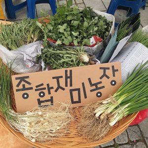 시장에서 맛보는 책 한 그릇 Vol.4  여행을 다녀와 농부가 되었습니다.