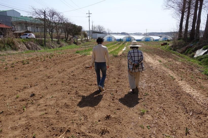 보리햇살농장, 지금 가장 맛있는 5월의 채소 _3/3